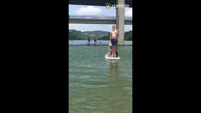 ボードに乗る男性と犬