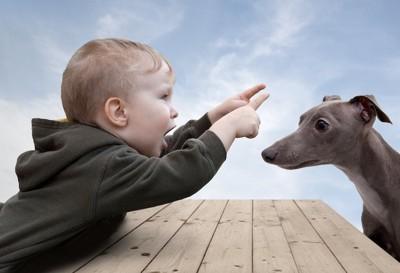 子供と向かい合って座る犬