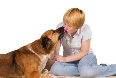 飼い主の口を舐める犬