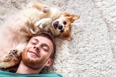 カーペットに寝転がる犬と飼い主