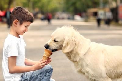 犬にアイスをあげる女性