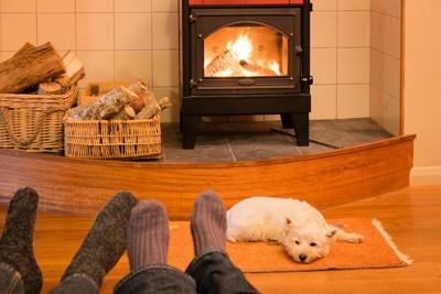 横になる人の足と暖炉の前で眠る犬