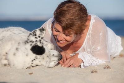 浜辺で人とくつろぐ犬