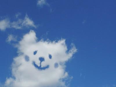 空 雲 犬のイラスト