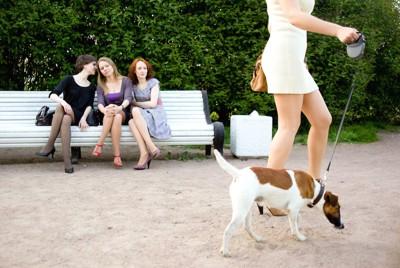 犬を連れた女性とベンチに座ってうわさ話をする3人の女性