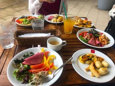 テーブルの上に前菜