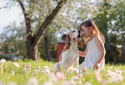 庭で一緒に遊ぶ女の子と犬
