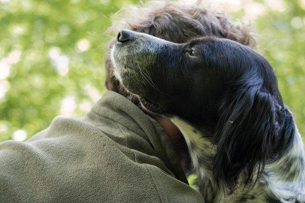頬ずりする男性と犬
