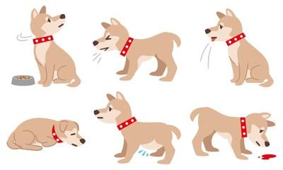 フィラリア症等の体調不良の犬