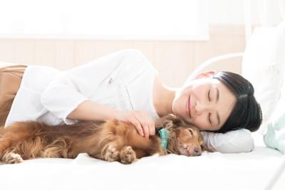 ダックスフントと添い寝する女性