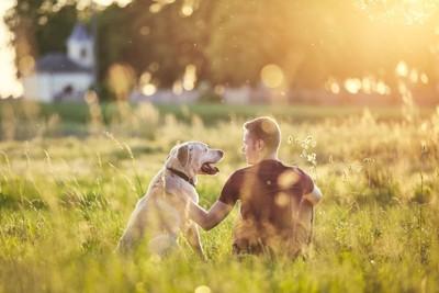 芝生に座る犬と男性の後ろ姿