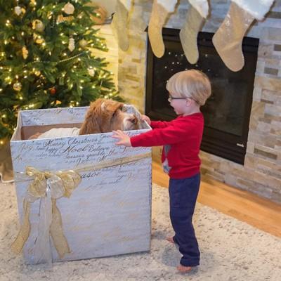 巨大プレゼントボックス