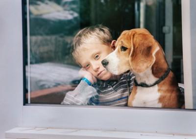 寂しそうな男の子に寄り添う犬