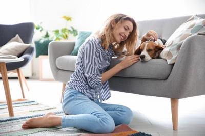 ソファーの上の犬と女性