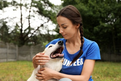 ボランティアの女性に抱かれる犬