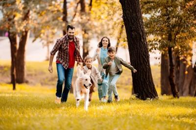 外で追いかけっこする家族と犬