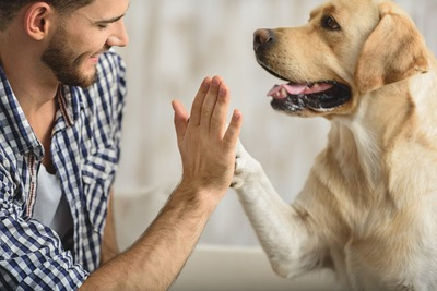 犬と男の人