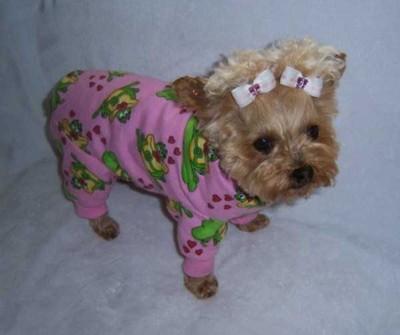 ヨークシャ ピンクのカラフルパジャマ