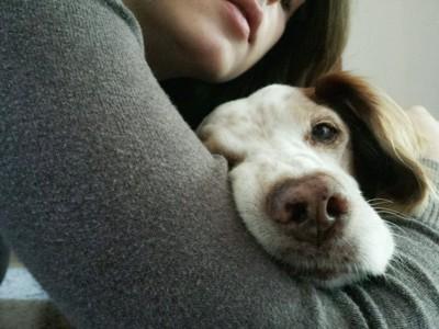 女性の腕に顔をおく犬