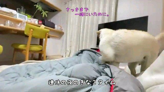 連休の~字幕