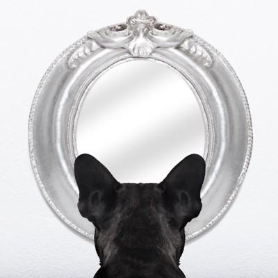 鏡を見る犬の後ろ姿