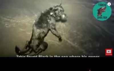 発見時のブラック