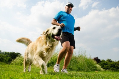 飼い主とジョギングするゴールデンレトリーバー