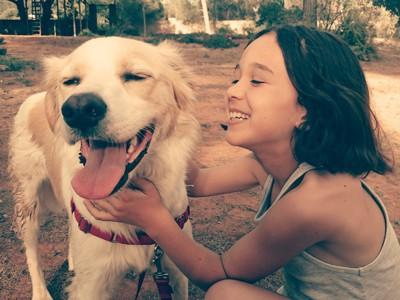 少女に撫でられている犬