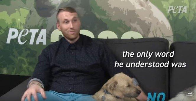 里親さんと犬