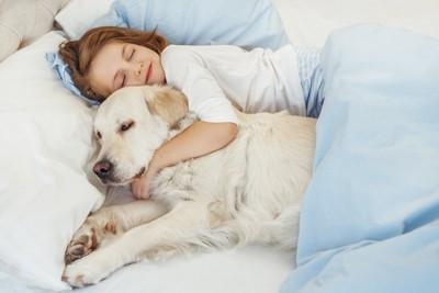 ベッドで一緒に眠る犬と女の子