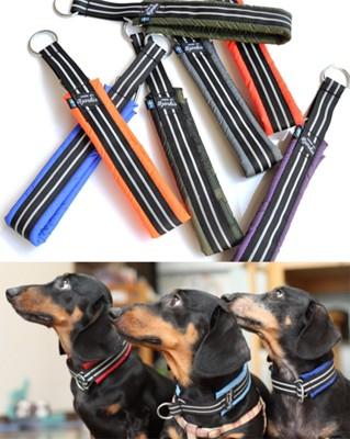ビヨルキスのハークチョークの写真と3匹の犬