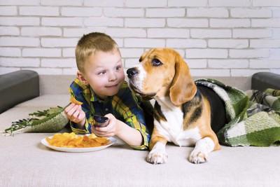 ポテトチップスを食べる子供と犬