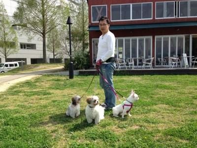わんぱぱと小型犬3匹