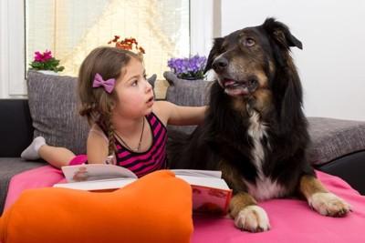 犬に手を差し伸べる少女