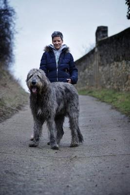 飼い主さんとアイリッシュ・ウルフハウンド