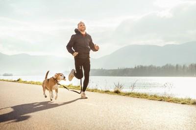 犬とジョギングする男性