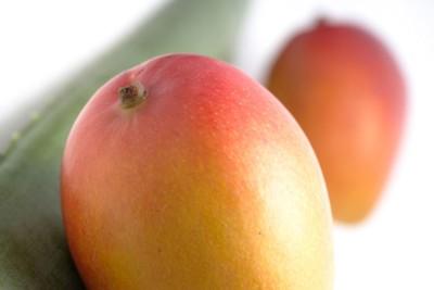 赤いマンゴー