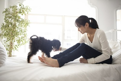 ベッドの上で犬と遊ぶ女性