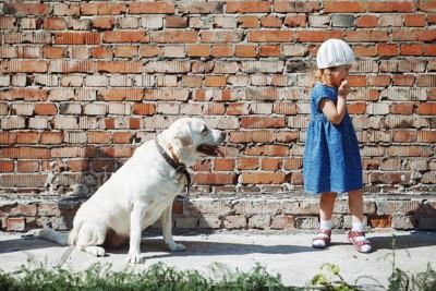 レトリバーに背を向ける小さな女の子