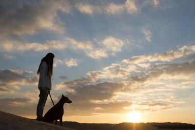 朝日の中の女性と犬(シルエット)