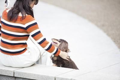 撫でる女性と見つめる犬
