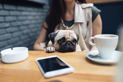 飼い主と一緒に座る犬