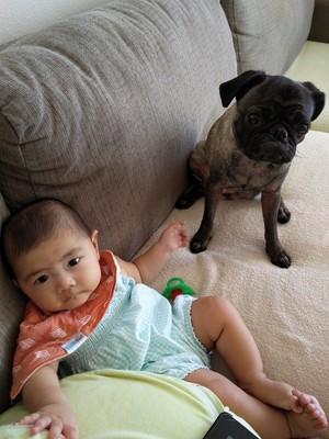 赤ちゃんとウメ