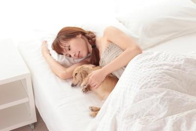 ベッドで犬と眠る女性