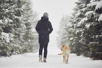 飼い主と一緒に雪の中を歩く犬