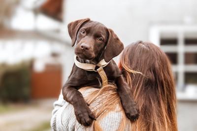 飼い主に抱っこされている犬