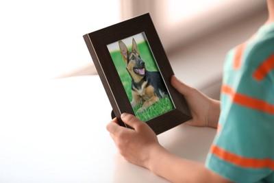 犬の写真が入った額縁を持っている飼い主