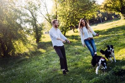 お散歩をする二頭の犬と男性と女性