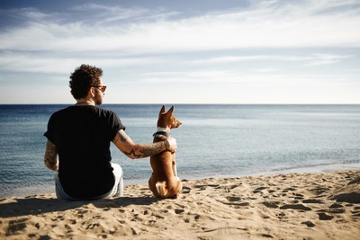 海で遠くを見る犬と男性の後ろ姿