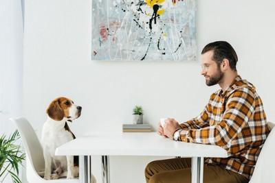 テーブルで向かい合う犬と男性